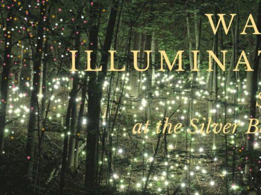 """Silver Beaver Lodge get together: """"Waipara Illuminations"""
